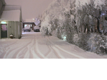 the guesthouse and the snow